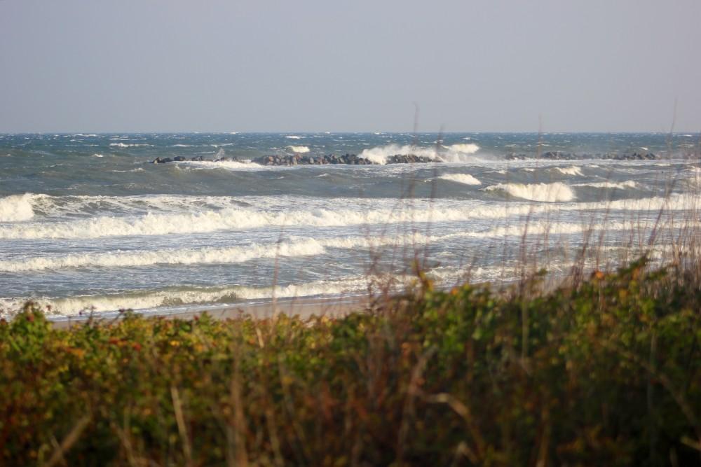 Surfen in Deutschland: ein normaler Tag an der Ostsee.
