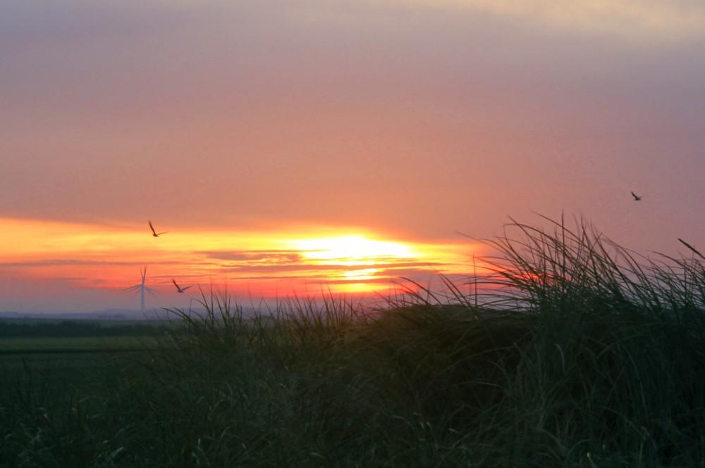 Sonnenaufgang Nordsee