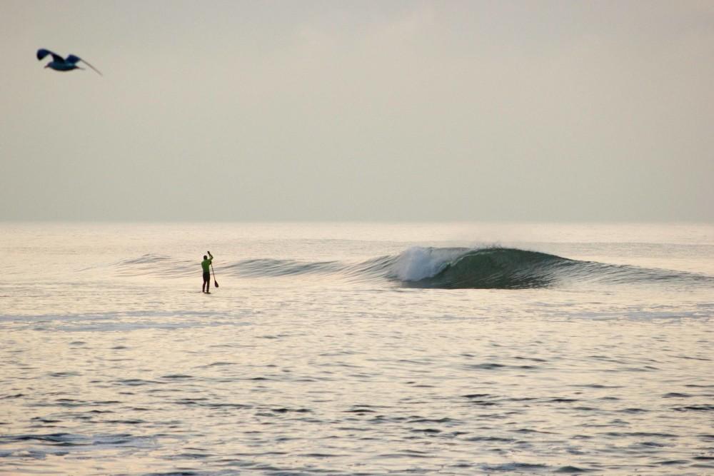 kette surfboard dänemark