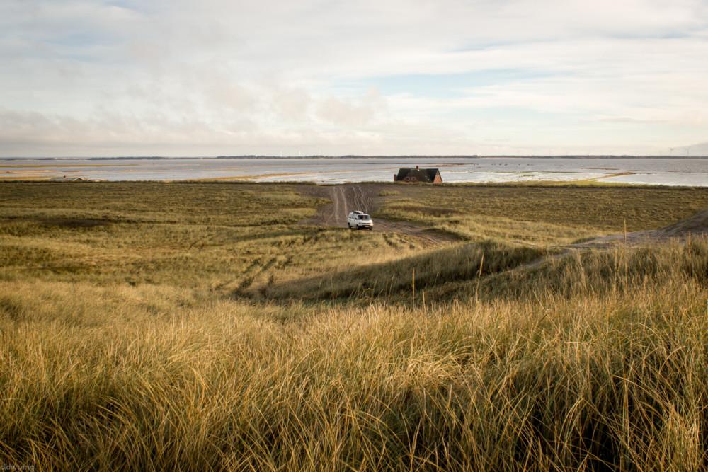 VW Bus an der dänischen Küste