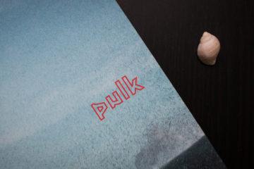 Titelblatt Pulk